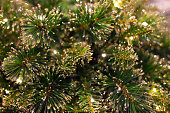 Abstract unfocused backgrounds with Christmas decorations with led light bokeh - close-up photo.