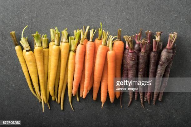 Abundance Of Fresh Colourful Carrots.