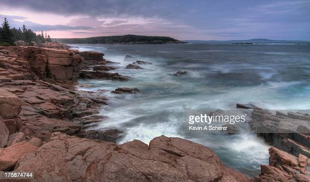 Acadian Tide