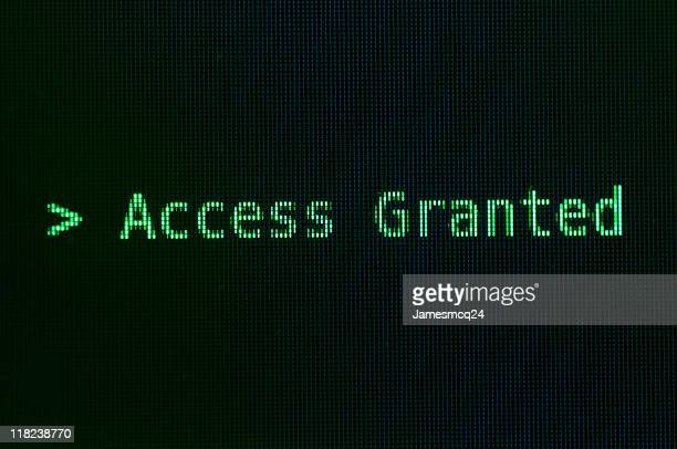 Access granted message in green