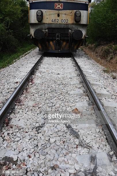 Accident site where a train runing between Thessaloniki and Skopjestruck killed at least 14 migrants trying to reach western Europe through Macedonia...