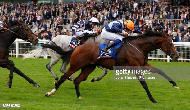 Accidental Agent ridden by Charles Bishop leads the field home to win the totescoop6 Challenge Cup at Ascot Racecourse