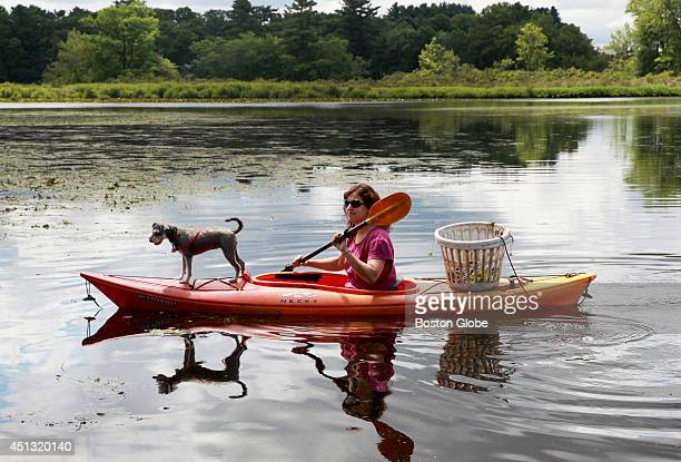 Accompanied by 'Jazzy' Newton resident Diana Fisher Gomberg kayaked along the Charles River in Waltham Thursday June 26 2014