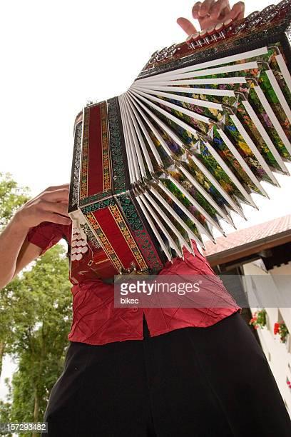 Accordionist with diatonic accordion
