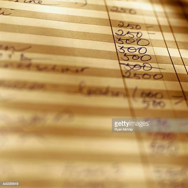 Accounting Ledger