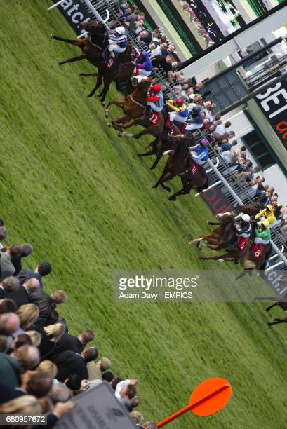 Ace of Hearts ridden by jockey W Woods leads the field in the 'press the red button to bet attheraces' rated stakes