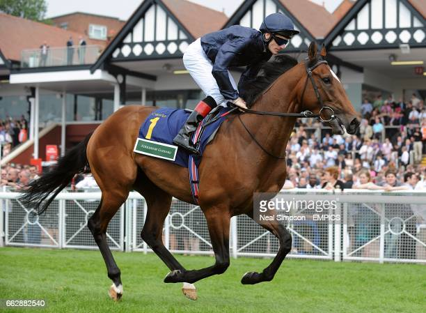 Achill Island ridden by jockey Johnny Murtagh going to post before the Addleshaw Goddard Dee Stakes during the Blue Square City Day at Chester...