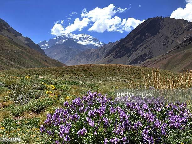 Aconcagua Mountain in Mendoza, Argentina