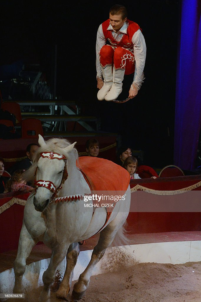 A acrobat of the Hungarian group 'Donert' performs on a horse during the 'International Cirkus Festival' (Circus) on February 24, 2013 in Prague. AFP PHOTO / MICHAL CIZEK