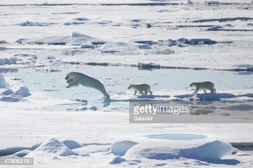 Across the Sea Ice