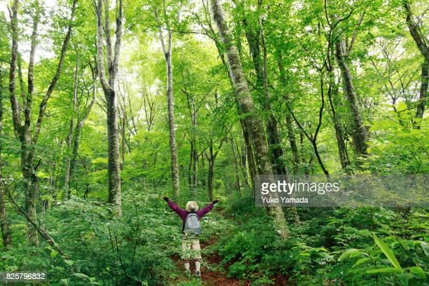 Active Japanese Senior Woman Enjoys Her Hobby Trekking