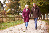 Active Senior Couple On Autumn Walk With Dog On Path Through Countryside