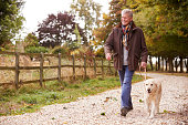 Active Senior Man On Autumn Walk With Dog On Path Through Countryside