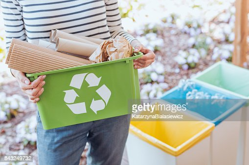 Activist sorting paper waste : Stock Photo