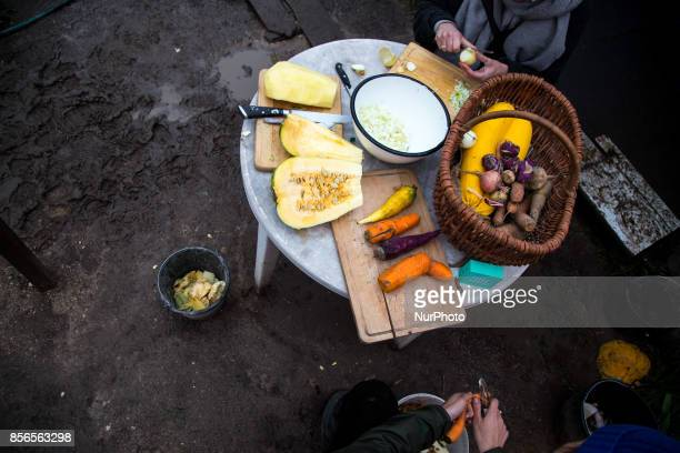 Activists cook the dinner quotCamp for Forestquot Pogorzelce near Bialowieza on September 21 2017