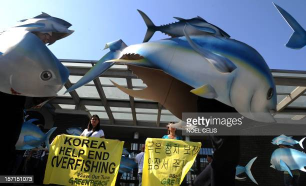 Activists from environment campaign group Greenpeace wearing cardboard tuna cutouts hold a protest in front of South Korea's embassy in Manila on...