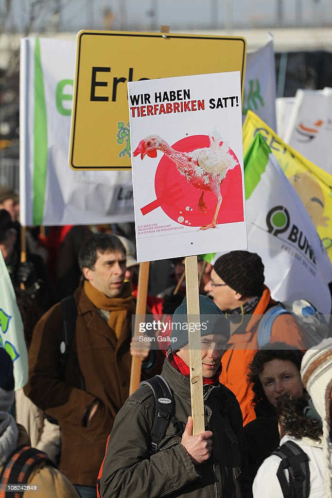 Activists, including one holding a sign that reads: 'We're sick of the animal factories!', march in a demonstration against the agricultural industry on January 22, 2011 in Berlin, Germany. Tens of thousands of demonstrators, including farmers and animal-rights activists, protested against industrial farming techniques, the use of genetically-modified seeds and animals, mass animal husbandry and corporate interest lobbying. The demonstration comes in the wake of a nation-wide dioxin scandal that led to the quarantine of 6,000 farms.