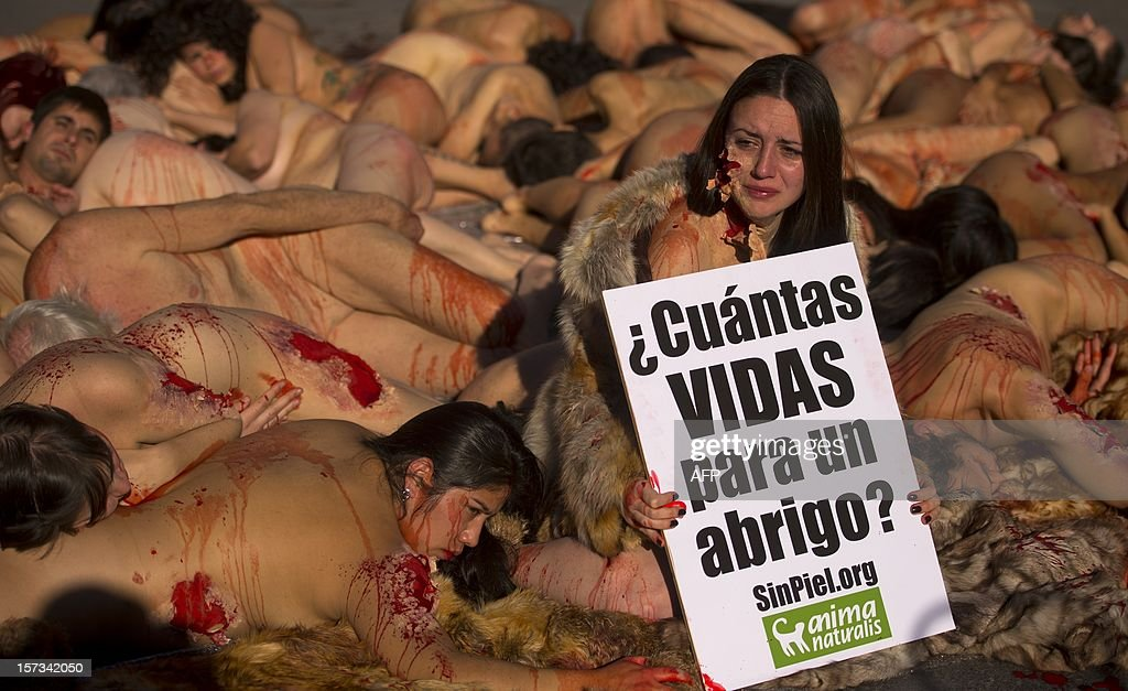 Activists of the animal-rights group AnimaNaturalis protest naked covered with fake blood against the use of fur in the textil industry in Madrid on December 2, 2012. Placard reads 'How many lives for a coat?'