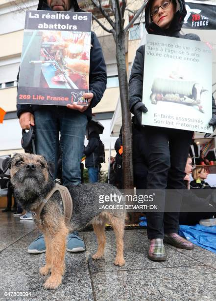 Activists of the association ''269 Life France' hold signs reading 'The reality o f slaughterhouses' and ' Life expectancy 25 years Killed at age 5...