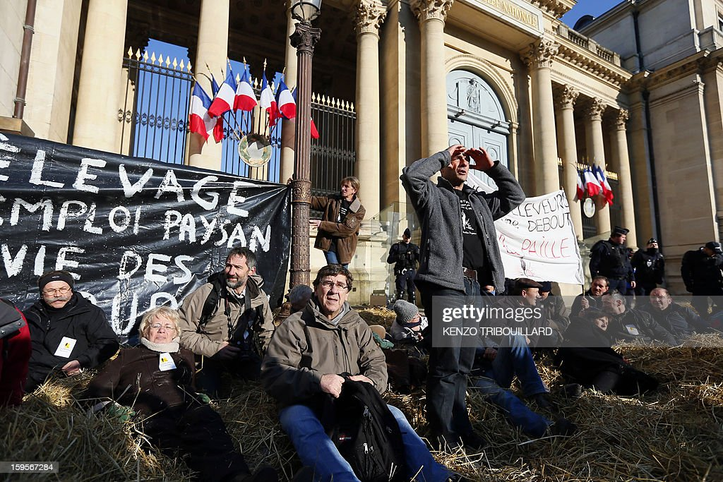 Activists of the French farmers union 'Confederation Paysanne' aere seated on the straw they spread during a protest in front of the French National Assembly, on January 16, 2013 in Paris, against breeding conditions in France. They denounced the increasing prices of basic products for the cattle.