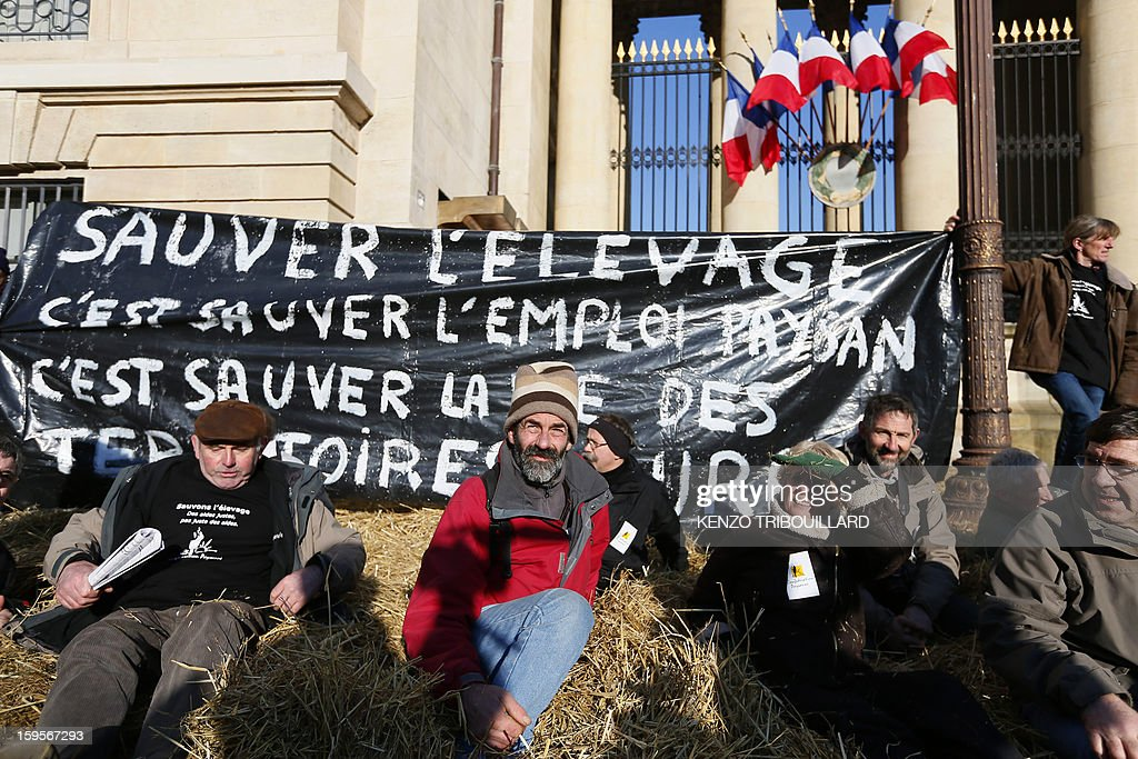 Activists of the French farmers union 'Confederation Paysanne' aere seated on the straw they spread during a protest in front of the French National Assembly, on January 16, 2013 in Paris, against breeding conditions in France. They denounced the increasing prices of basic products for the cattle. The banner reads : Save breading is saving jobs and the life in the breeding areas'.