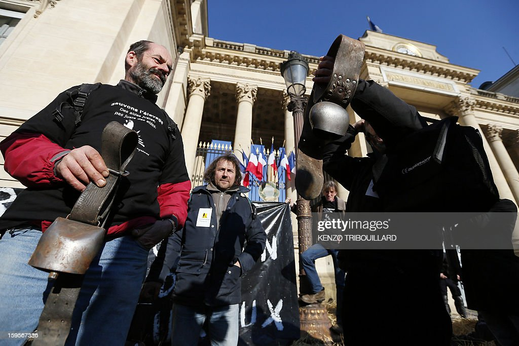 Activists of the French farmers union 'Confederation Paysanne hang cowbells during a protest in front of the French National Assembly, on January 16, 2013 in Paris, against breeding conditions in France. They denounced the increasing prices of basic products for the cattle. AFP PHOTO/ KENZO TRIBOUILLARD