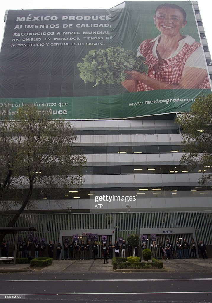 Activists of the global environmental watchdog Greenpeace demonstrate against US biotech giant Monsanto and the commercial sowing of transgenic corn, at the entrance of the Economy Ministry in Mexico City, on November 5, 2012. AFP PHOTO/ Pedro Pardo