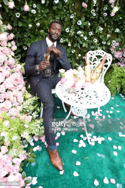 Actor Aldis Hodge attends the 2017 Film Independent Spirit Awards sponsored by PerrierJouet on February 25 2017 in Santa Monica California