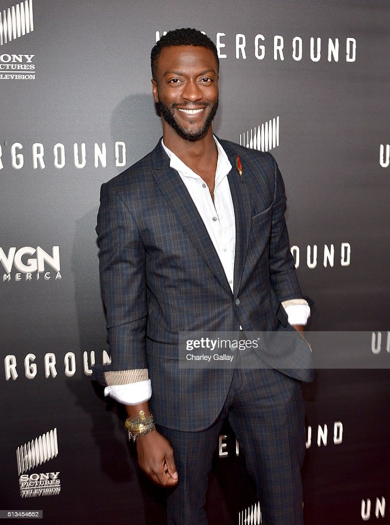Actor Aldis Hodge attends WGN America's 'Underground' World Premiere on March 2, 2016 in Los Angeles, California.