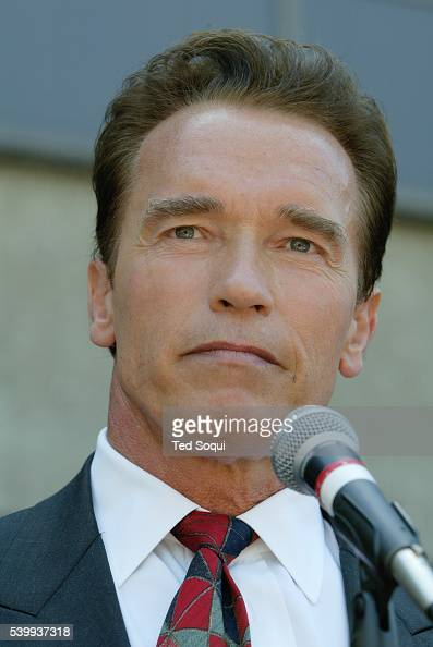 arnold schwarzenegger research paper Powers of the governor research papers look at an example of governor arnold schwarzenegger and his policy - this is a research paper on governor schwarzenegger.