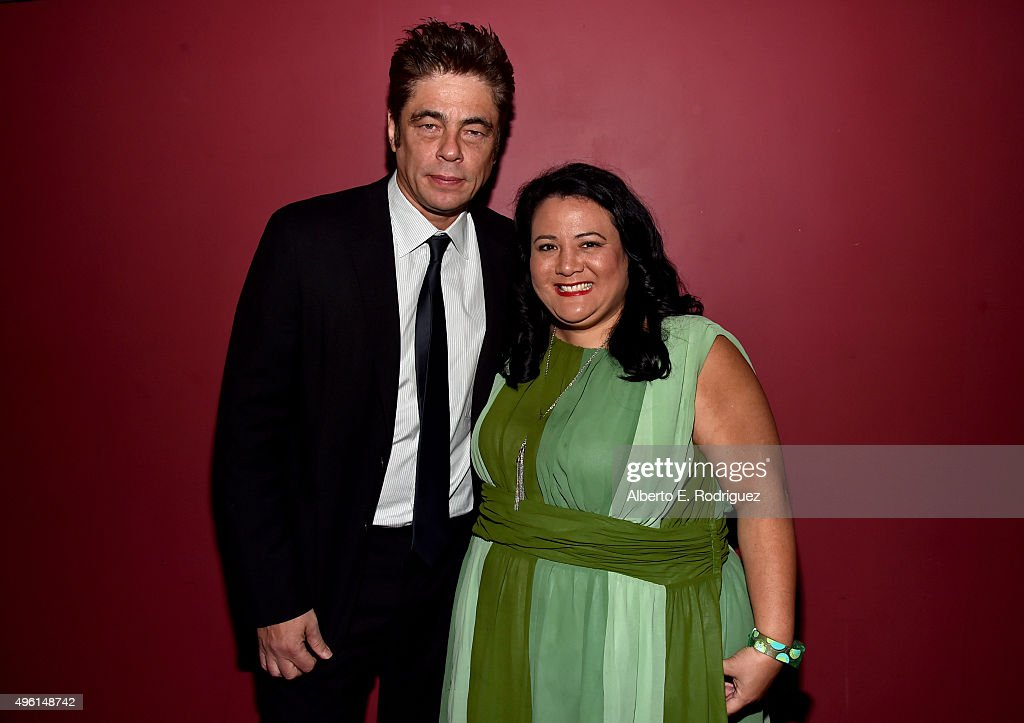 Actor Benicio del Toro (L) and Variety's Jenelle Riley attend 'A Conversation with Benicio Del Toro' during AFI FEST 2015 presented by Audi at the Egyptian Theatre on November 7, 2015 in Hollywood, California.