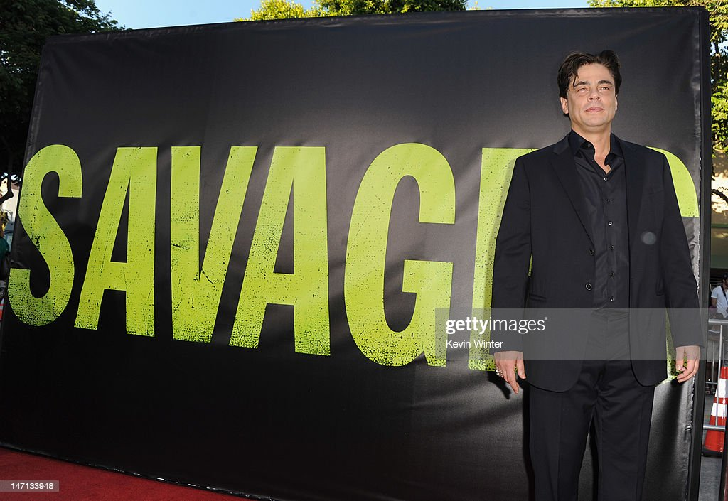 Actor <a gi-track='captionPersonalityLinkClicked' href=/galleries/search?phrase=Benicio+Del+Toro&family=editorial&specificpeople=203277 ng-click='$event.stopPropagation()'>Benicio Del Toro</a> arrives at Premiere of Universal Pictures' 'Savages' at Westwood Village on June 25, 2012 in Los Angeles, California.