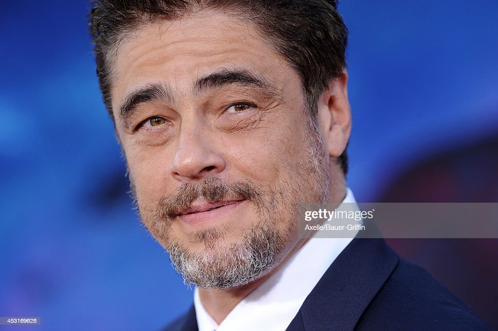 Actor Benicio Del Toro arrives at the Los Angeles premiere of 'Guardians Of The Galaxy' at the El Capitan Theatre on July 21 2014 in Hollywood...