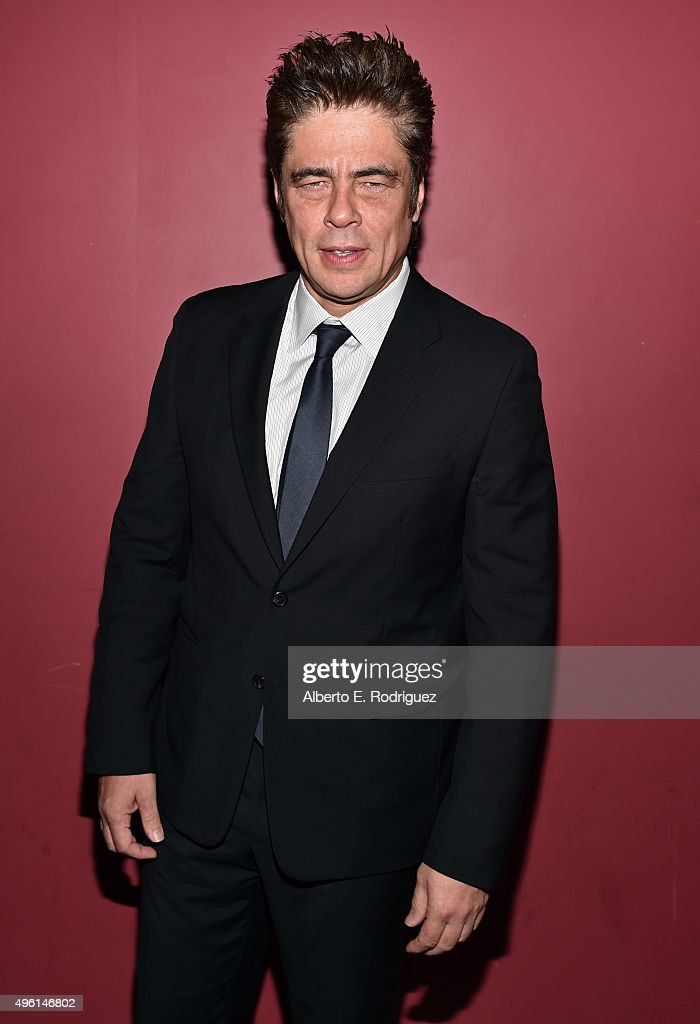 AFI FEST 2015 Presented By Audi - A Conversation With Benicio Del Toro
