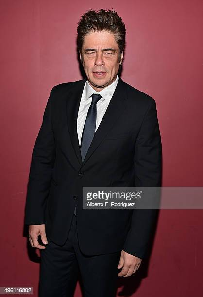 Actor Benicio del Toro attends 'A Conversation with Benicio Del Toro' during AFI FEST 2015 presented by Audi at the Egyptian Theatre on November 7...