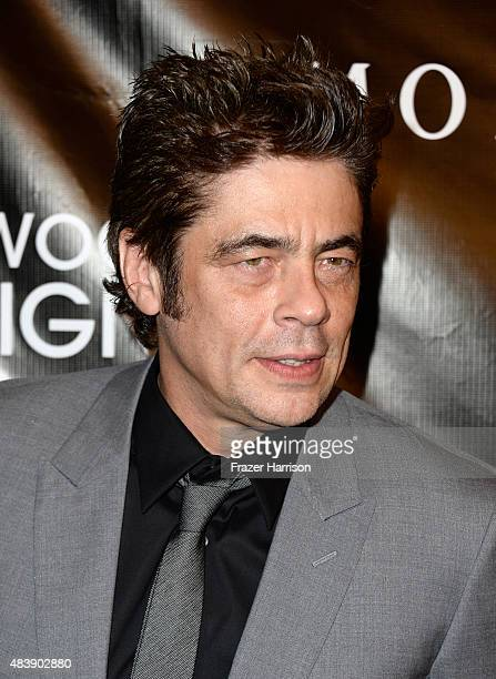 Actor Benicio Del Toro attends HFPA Annual Grants Banquet at the Beverly Wilshire Four Seasons Hotel on August 13 2015 in Beverly Hills California