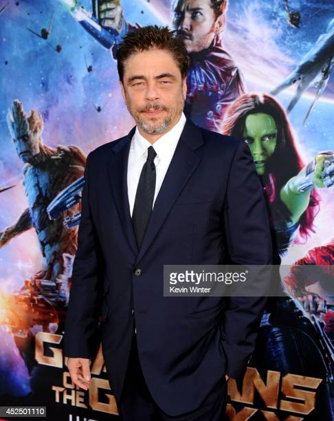 Actor Benicio Del Toro attends the premiere of Marvel's 'Guardians Of The Galaxy' at the Dolby Theatre on July 21 2014 in Hollywood California