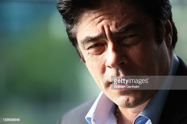 Actor Benicio Del Toro poses during a photocall for 'Savages' at Club 23 on October 11 2012 in Melbourne Australia