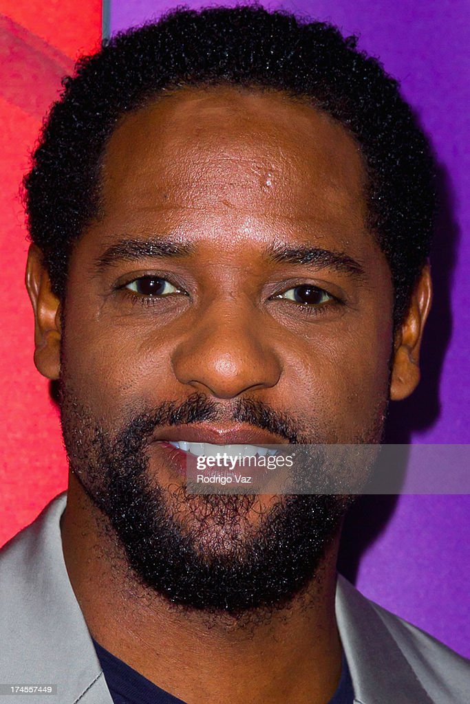 Actor Blair Underwood attends the 2013 Television Critic Association's Summer Press Tour - NBC Party at The Beverly Hilton Hotel on July 27, 2013 in Beverly Hills, California.