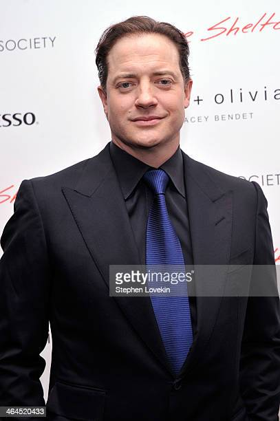 Actor Brendan Fraser attend the 'Gimme Shelter' screening hosted by Roadside Attractions and Day 28 Films with The Cinema Society on January 22 2014...