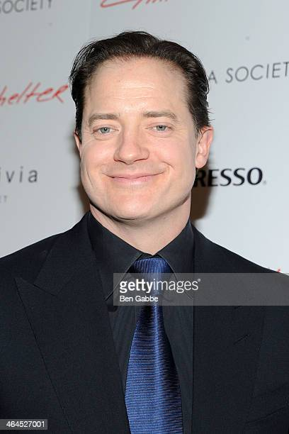 Actor Brendan Fraser attends Roadside Attractions Day 28 Films and The Cinema Society screening of 'Gimme Shelter' at The Museum of Modern Art on...