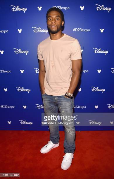 Actor Chadwick Boseman of AVENGERS INFINITY WAR took part today in the Walt Disney Studios live action presentation at Disney's D23 EXPO 2017 in...