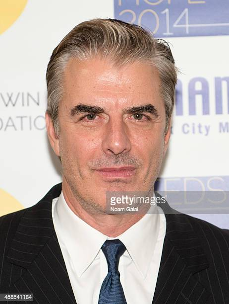 Actor Chris Noth attends the 2014 NAMINYC Metro Seeds Of Hope Gala at Altman Building on November 6 2014 in New York City