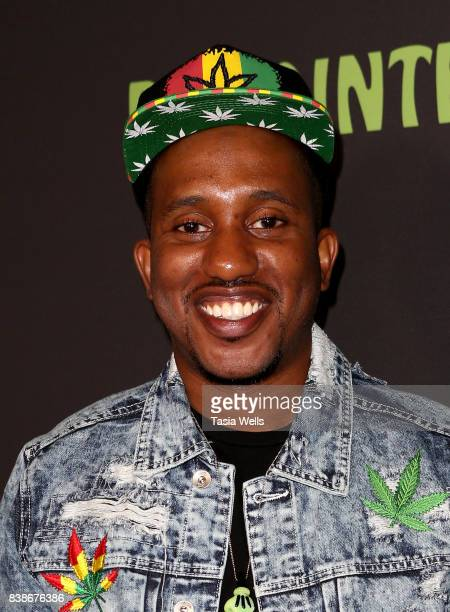 Actor Chris Redd at the premiere of Netflix's 'Disjointed' at Cinefamily on August 24 2017 in Los Angeles California