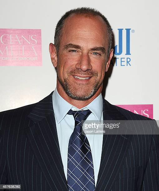 Actor Christopher Meloni attends the premiere of 'White Bird in a Blizzard' at ArcLight Hollywood on October 21 2014 in Hollywood California