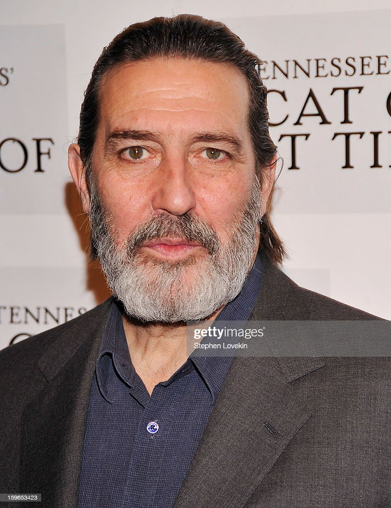 Actor Ciaran Hinds attends the 'Cat On A Hot Tin Roof' Broadway opening night after party at The Lighthouse at Chelsea Piers on January 17, 2013 in New York City.
