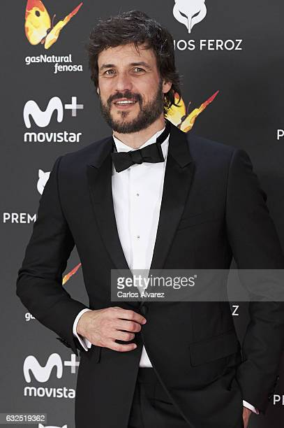 Actor Daniel Grao attends the Feroz cinema awards 2016 at the Duques de Pastrana Palace on January 23 2017 in Madrid Spain