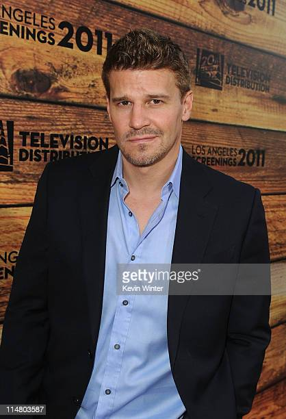 Actor David Boreanaz attends a starstudded party hosted by Twentieth Century Fox Television Distribution at the Fox Lot on May 26 2011 in Century...