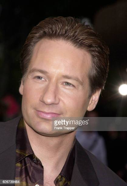 Actor David Duchovny at the special screening of 'Evolution'