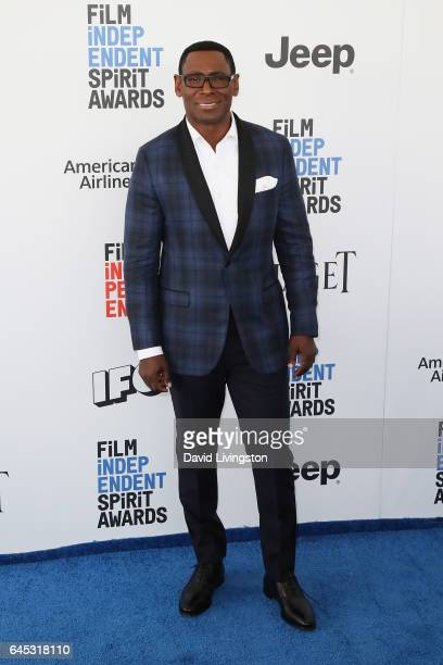 Actor David Harewood attends the 2017 Film Independent Spirit Awards on February 25 2017 in Santa Monica California